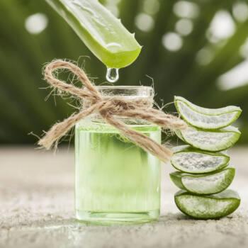 Aloe Vera inner filet ingredient highlight