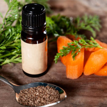 Carrot Seed Oil ingredient highlight