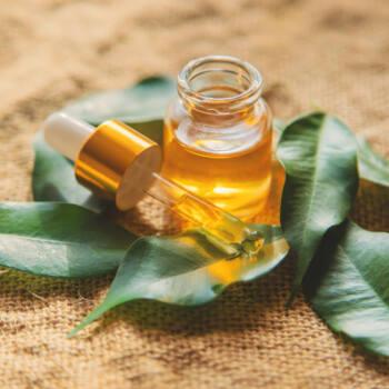 Tea tree oil highlight